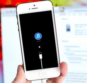 Put iPhone Recovery Mode
